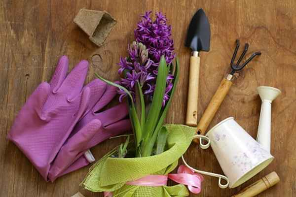 Narzędzia ogrodowe – w co warto się wyposażyć